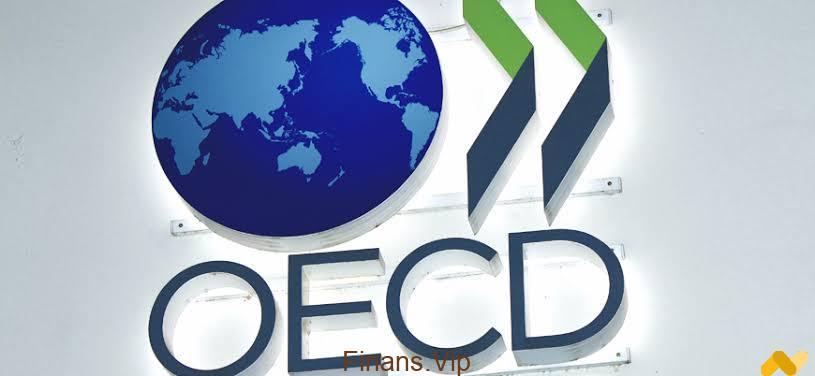OECD Nedir? OECD Ne Yapar? OECD Ülkeleri Hangileridir?